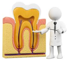 Thuốc kháng sinh điều trị viêm tủy răng an toàn – hiệu quả